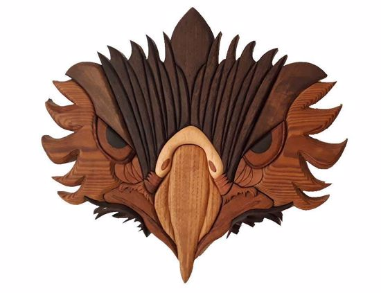 Picture of Eagle