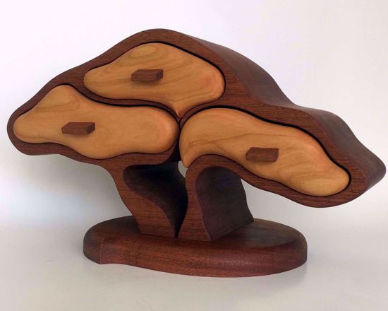 Picture of Bandsaw Box-Bonsai Tree